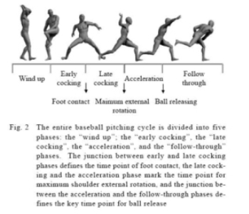 The Baseball Pitching Cycle